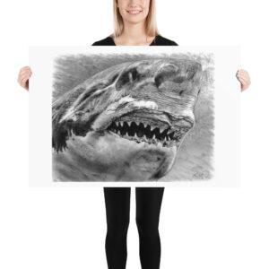 Matte Poster – Graphite Shark 005