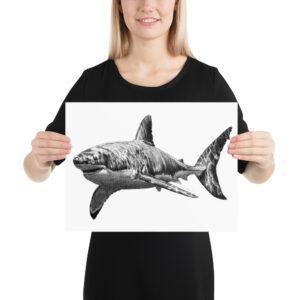 Matte Poster – Graphite Shark 001