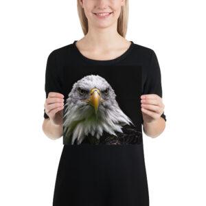 Photo Print – Bald Eagle 0223